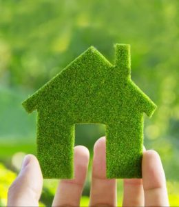 Going Green in the home